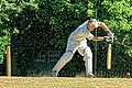 Nuthurst CC v. Henfield CC at Mannings Heath, West Sussex, England 071.jpg