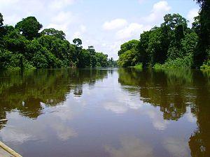 Nyong River - Nyong River