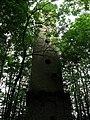 Obelisk in Obelisk Grove - geograph.org.uk - 458318.jpg