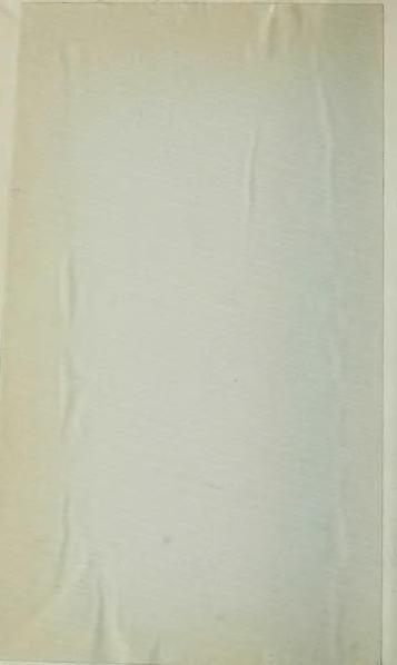 File:Ochsé - Profils d'or et de cendre, 1911.djvu