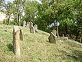 Old jewish cemetery in Beckov - panoramio.jpg