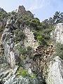 Olympos, Lycia, Turkey (9653751759).jpg