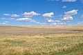 Open Plains (8037096148).jpg