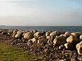 Oresund shore.jpg