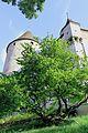 Oron-le-Châtel, château d'Oron, vue d'une des extrémités.jpg