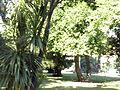 Orto botanico di Napoli 127.jpg