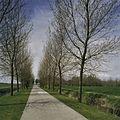 Overzicht van de oprijlaan richting borg - Den Ham - 20386560 - RCE.jpg