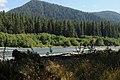 PAISAJE DEL OLIMPIC NATIONAL PARK - panoramio.jpg