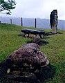 PMa 000056 CO San Agustin.jpg