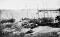 PSM V59 D560 Fishing boats on the shore of concarneau.png
