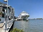 Pacific Dawn (ship) at Portside Wharf at Hamilton, Queensland 02.jpg