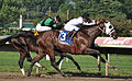 Paco Lopez Wins on Where's Sterling (3) (6068157300).jpg