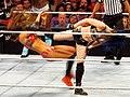 Paige side kick.jpg