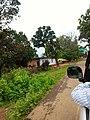 Panna, Madhya Pradesh 485661, India - panoramio (23).jpg