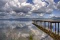 Panorama lago di bracciano (3495876563).jpg
