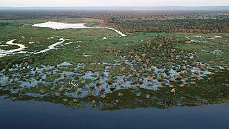 Geography of Brazil - Pantanal wetland