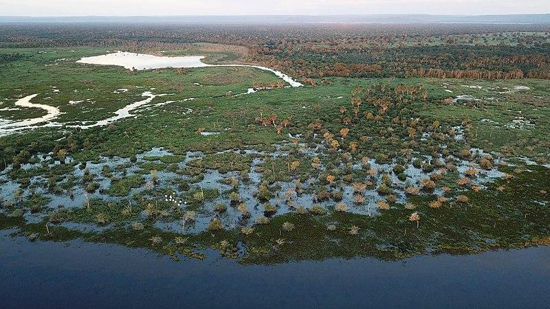 File:Pantanal em Itiquira.jpg