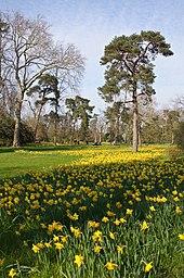 170px-Parc_de_Bagatelle_Paris_printemps dans Chemin spirituel