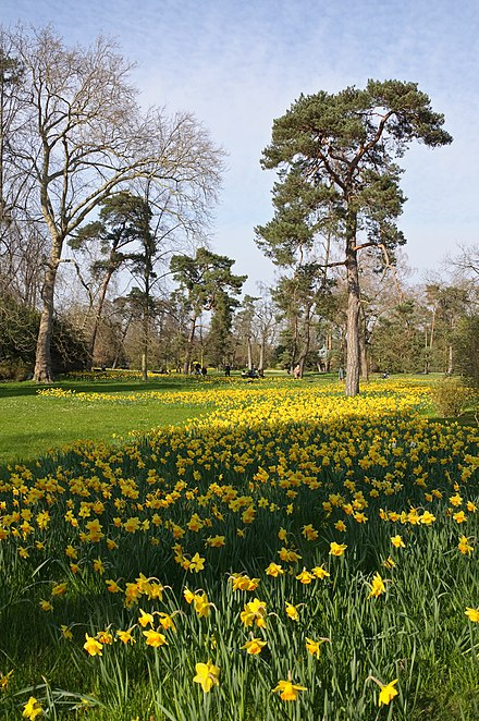 Parc de Bagatelle Paris printemps.jpg