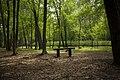 Park Krajobrazowy, grobowiec, Wietrzychowice - panoramio.jpg