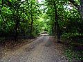 Park prirode Kamaraš2.JPG