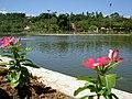 Parque blumenau - panoramio - W.Feistler.jpg