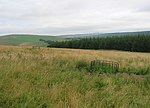 File:Pasture, Crookston Mains Hill - geograph.org.uk - 38029.jpg