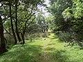 Path round Semerwater - geograph.org.uk - 1410434.jpg