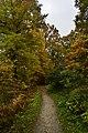 Petit chemin entre les couleurs automnales (22436288018).jpg