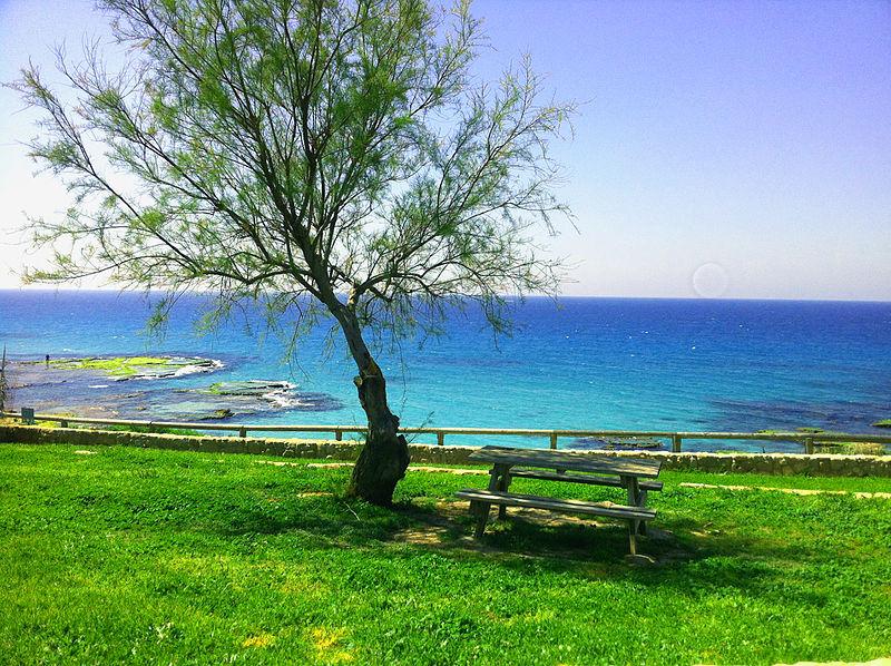 גן לאומי חוף אכזיב