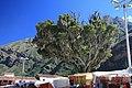 Plaza von Pisac - panoramio.jpg
