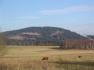 Plešivec (Ore Mountains) - View of Plešivec from Abertamy