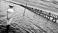 Pontile Isolotto San Clemente Lesina.jpg