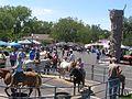 Pony Rides P8180048.jpg