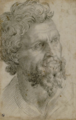 Portrait of a bearded man. Cellini, Benvenuto.png
