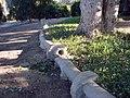 Prospect Park, Irrigation Curb, 2005 (6589245583).jpg