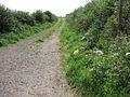 Public Footpath - geograph.org.uk - 512474.jpg