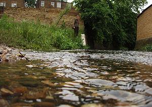 River Quaggy - Image: Quaggylevel
