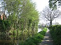 Quiet stretch of Montgomery Canal - geograph.org.uk - 791430.jpg