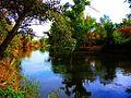 Río Jarama po San Fernando de Henares, en la linde sur del término antes de confluir con el río Henares.jpg