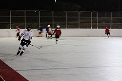 RLZ Roller Hockey players 01.JPG