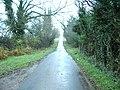 Randlaw Lane - geograph.org.uk - 283847.jpg