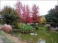 Rando autour de Vrenioz et jardin de Bois Marquis (octobre 2018) 022-001.jpg