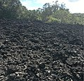 Rangitoto Island Lava Field.jpg