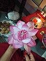 Rare Lotus.jpg