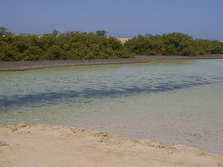 Raʾs-Muḥammad-Nationalpark