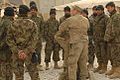Red Bull Soldiers train with ANA, ANP DVIDS354199.jpg