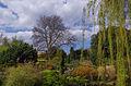 Regent's Park - Londres.jpg