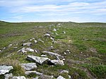 File:Remains of an old Manx dry stone wall on coastal moorland - geograph.org.uk - 491584.jpg