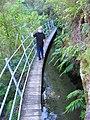Restored waterrace at Pupu Valley Historic Power Station - panoramio.jpg